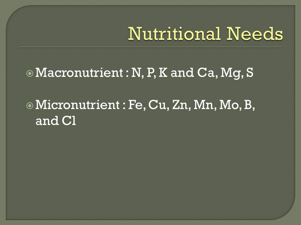 Nutritional Needs Macronutrient : N, P, K and Ca, Mg, S