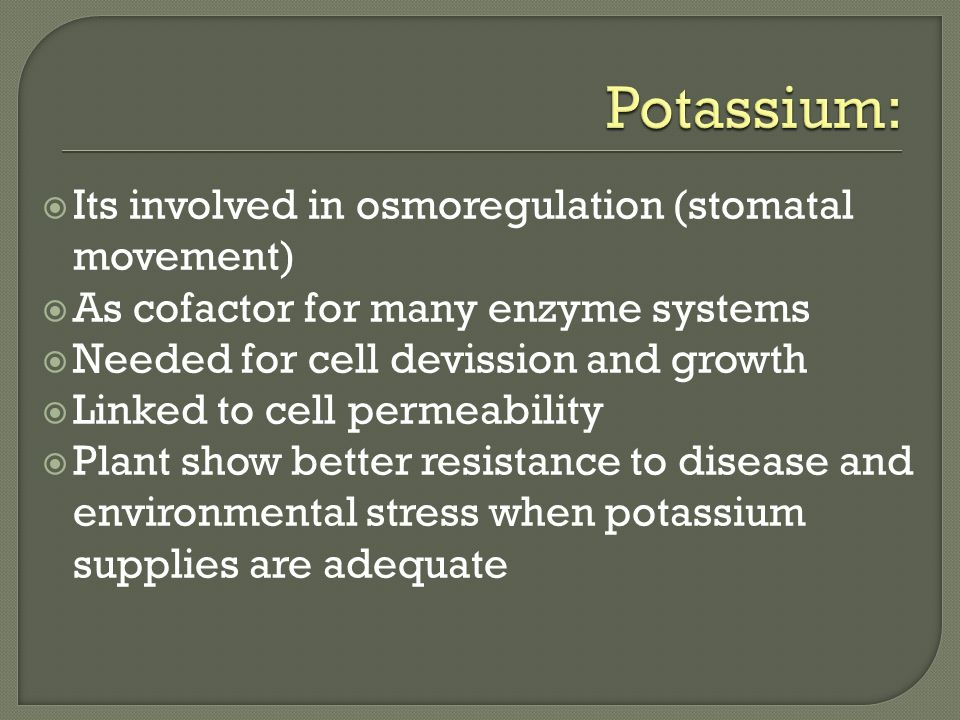 Potassium: Its involved in osmoregulation (stomatal movement)