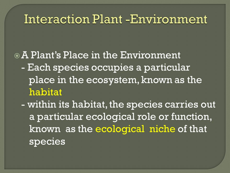 Interaction Plant -Environment