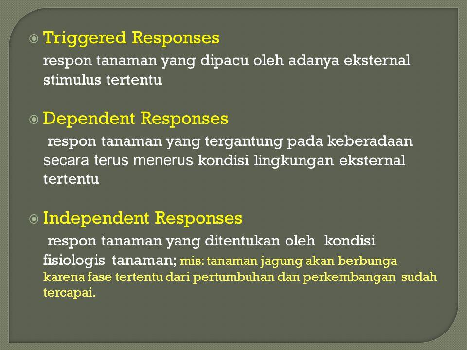 Triggered Responses respon tanaman yang dipacu oleh adanya eksternal stimulus tertentu. Dependent Responses.