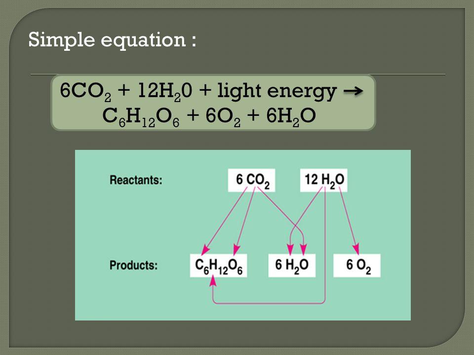 Simple equation : 6CO2 + 12H20 + light energy C6H12O6 + 6O2 + 6H2O