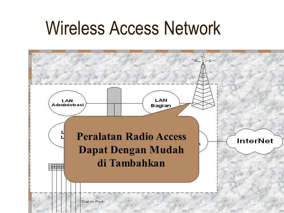 Wireless Access Network
