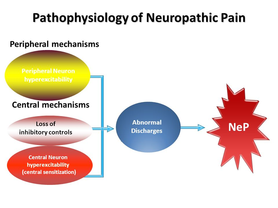 Pathophysiology of Neuropathic Pain