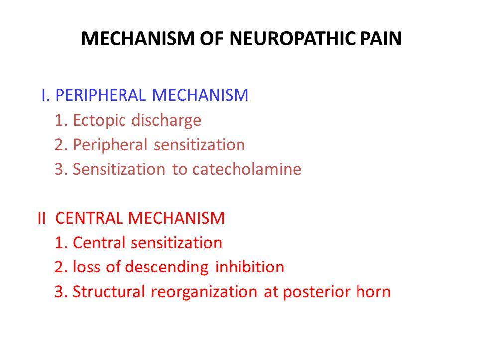 MECHANISM OF NEUROPATHIC PAIN