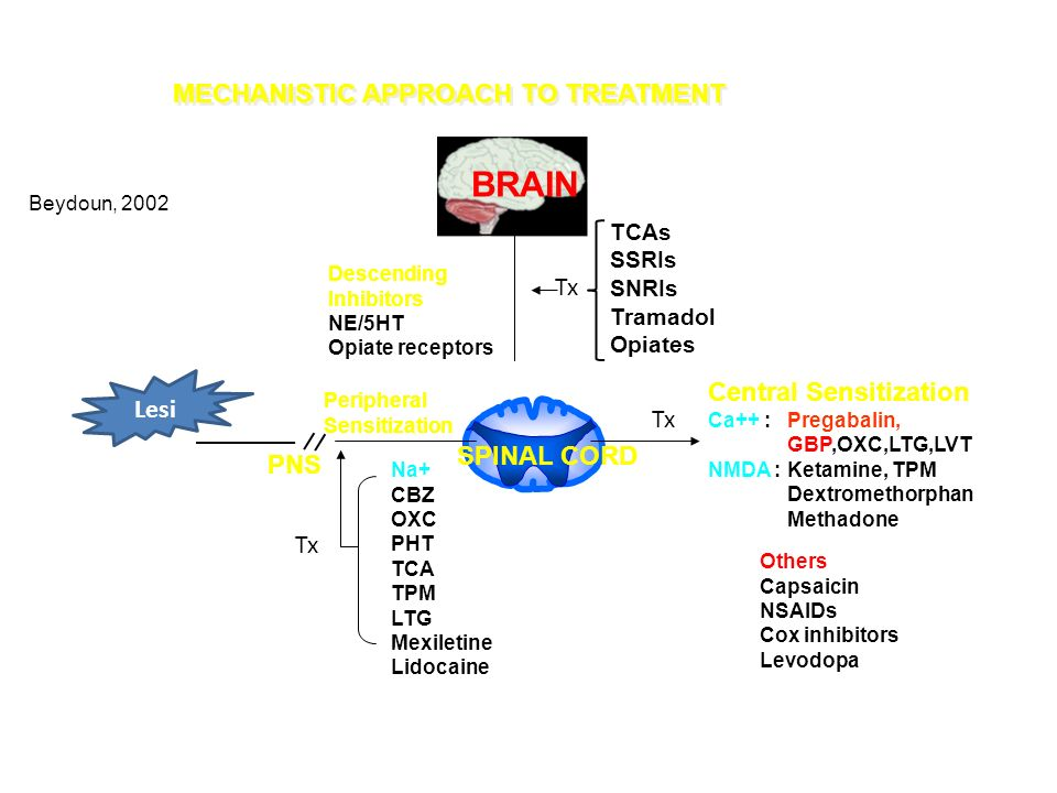 BRAIN MECHANISTIC APPROACH TO TREATMENT Tx Central Sensitization Lesi