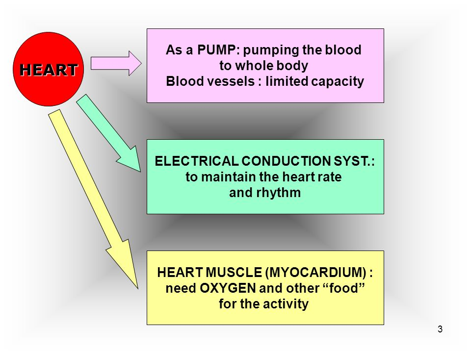 HEART As a PUMP: pumping the blood to whole body