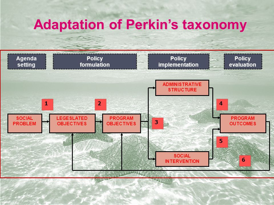 Adaptation of Perkin's taxonomy