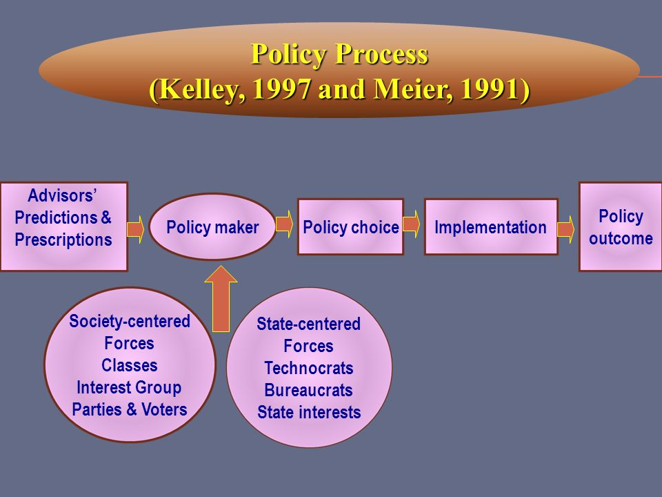 Policy Process (Kelley, 1997 and Meier, 1991)