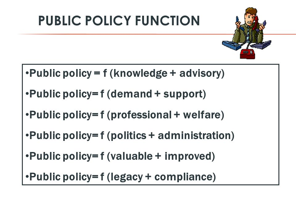 PUBLIC POLICY FUNCTION