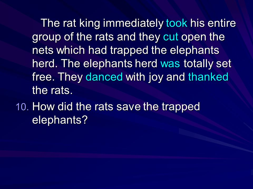 The rat king immediately took his entire group of the rats and they cut open the nets which had trapped the elephants herd. The elephants herd was totally set free. They danced with joy and thanked the rats.