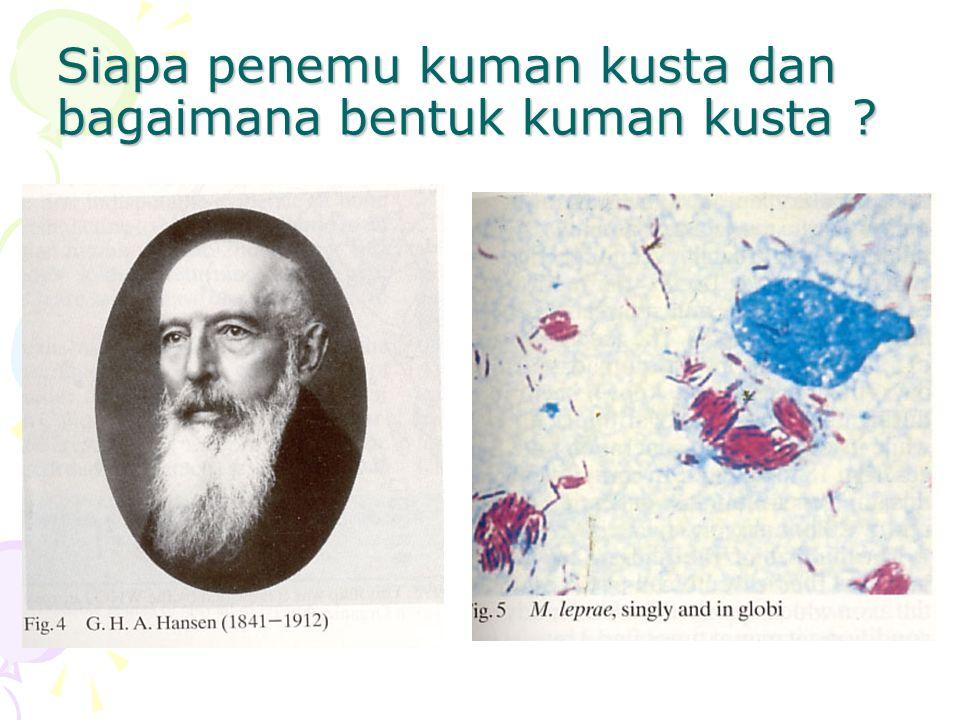 Siapa penemu kuman kusta dan bagaimana bentuk kuman kusta