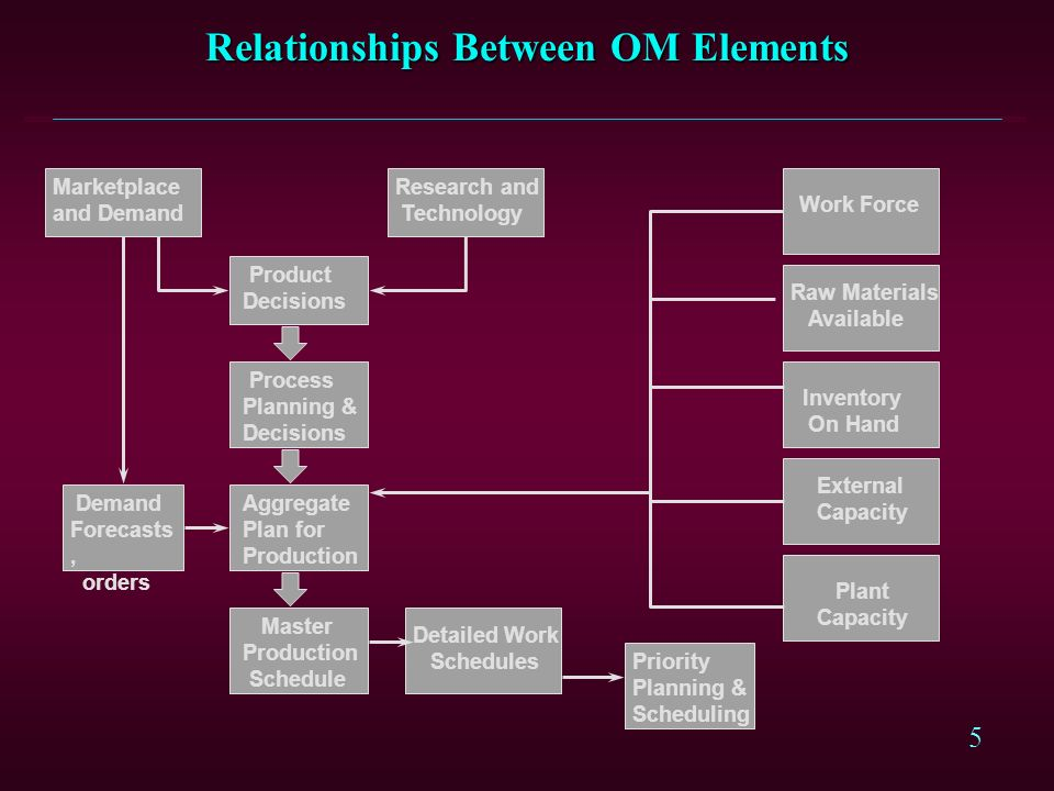 Relationships Between OM Elements
