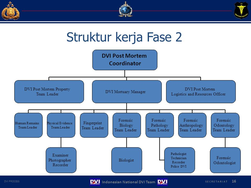 Struktur kerja Fase 2 DVI Post Mortem Coordinator DVI Post Mortem