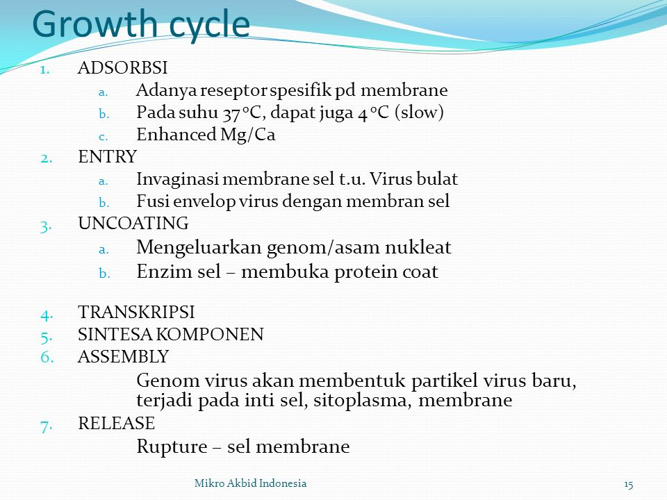 Growth cycle Mengeluarkan genom/asam nukleat