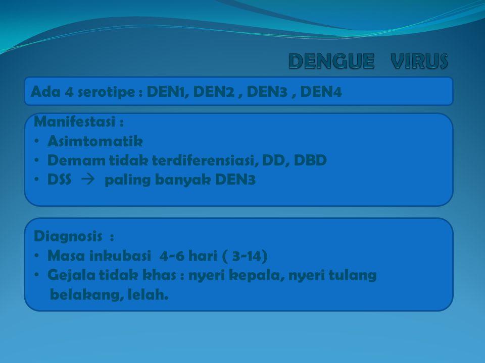 DENGUE VIRUS Ada 4 serotipe : DEN1, DEN2 , DEN3 , DEN4 Manifestasi :