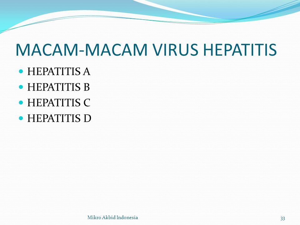 MACAM-MACAM VIRUS HEPATITIS