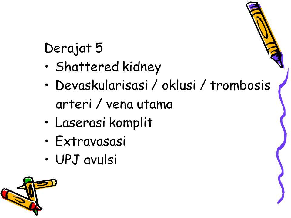 Derajat 5 Shattered kidney. Devaskularisasi / oklusi / trombosis. arteri / vena utama. Laserasi komplit.