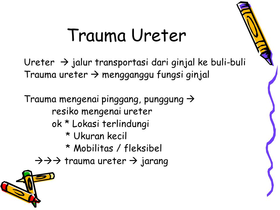 Trauma Ureter Ureter  jalur transportasi dari ginjal ke buli-buli