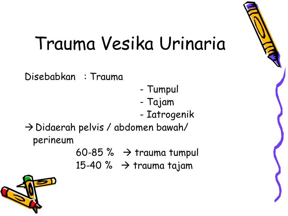 Trauma Vesika Urinaria