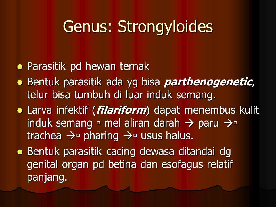 Genus: Strongyloides Parasitik pd hewan ternak