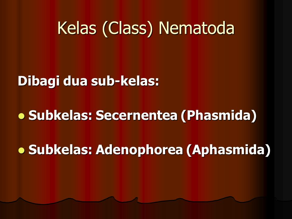 Kelas (Class) Nematoda