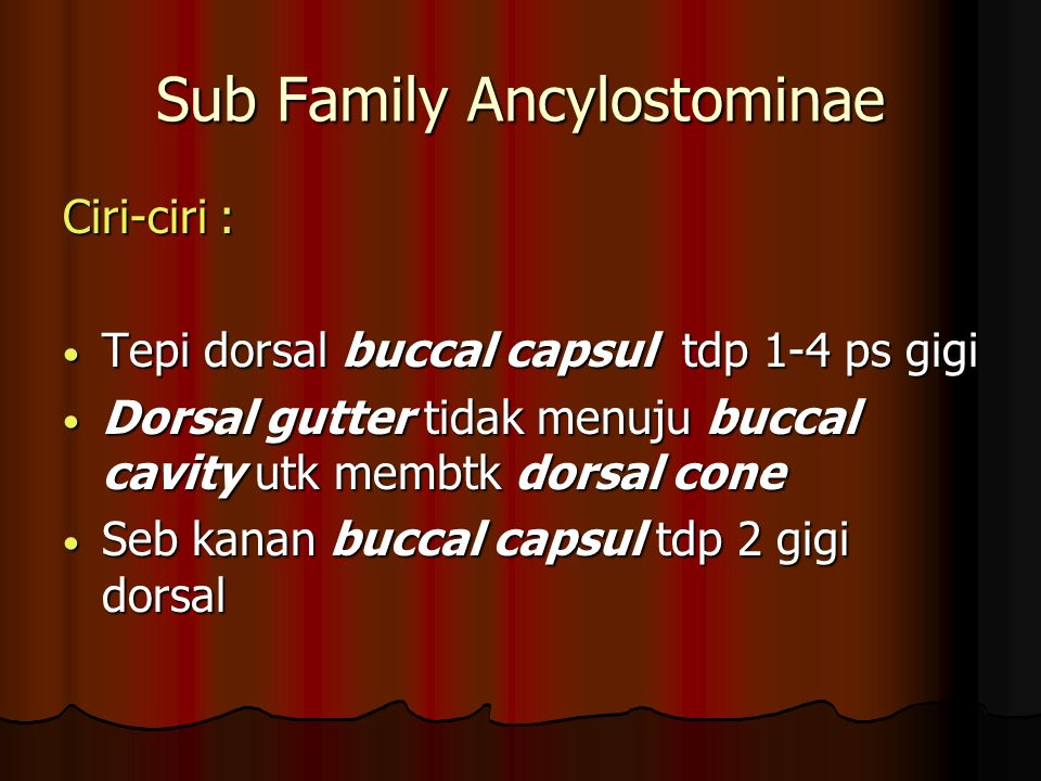 Sub Family Ancylostominae
