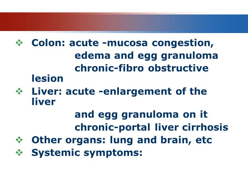 Pathology Colon: acute -mucosa congestion, edema and egg granuloma