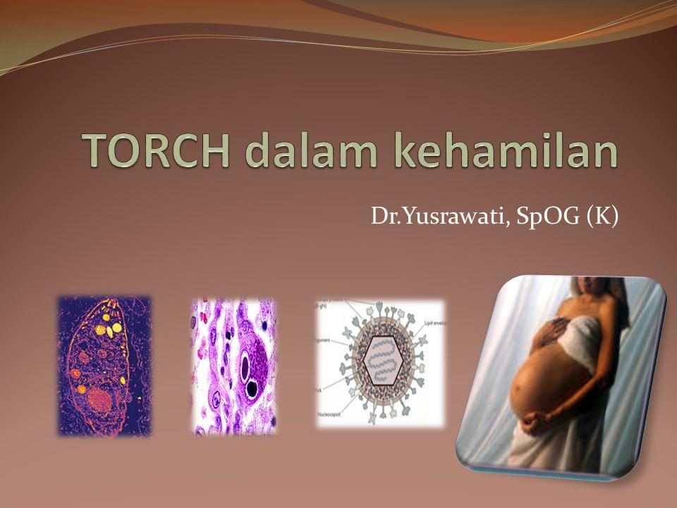 TORCH dalam kehamilan Dr.Yusrawati, SpOG (K)