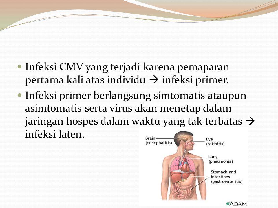 Infeksi CMV yang terjadi karena pemaparan pertama kali atas individu  infeksi primer.