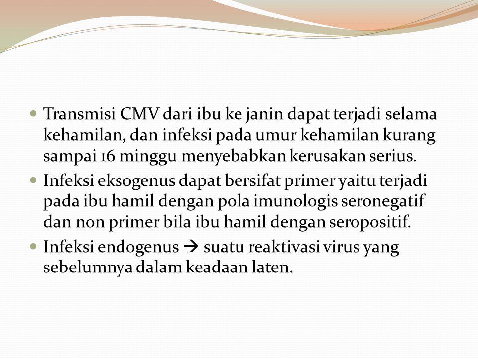 Transmisi CMV dari ibu ke janin dapat terjadi selama kehamilan, dan infeksi pada umur kehamilan kurang sampai 16 minggu menyebabkan kerusakan serius.