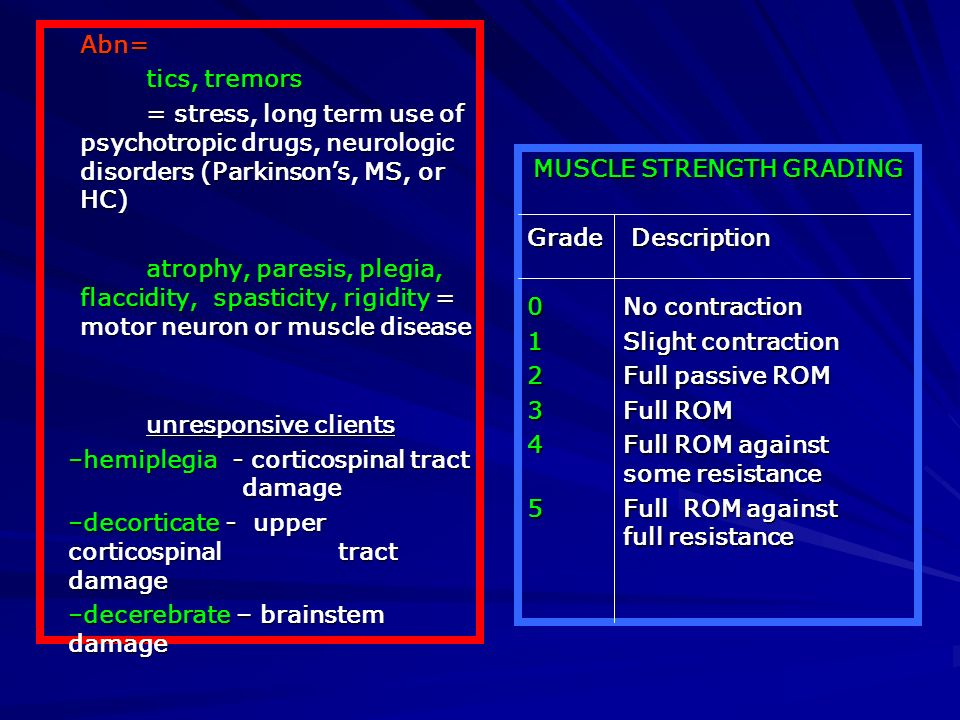 MUSCLE STRENGTH GRADING