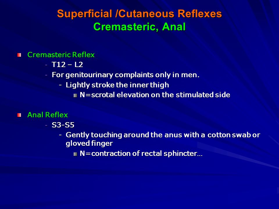 Superficial /Cutaneous Reflexes Cremasteric, Anal