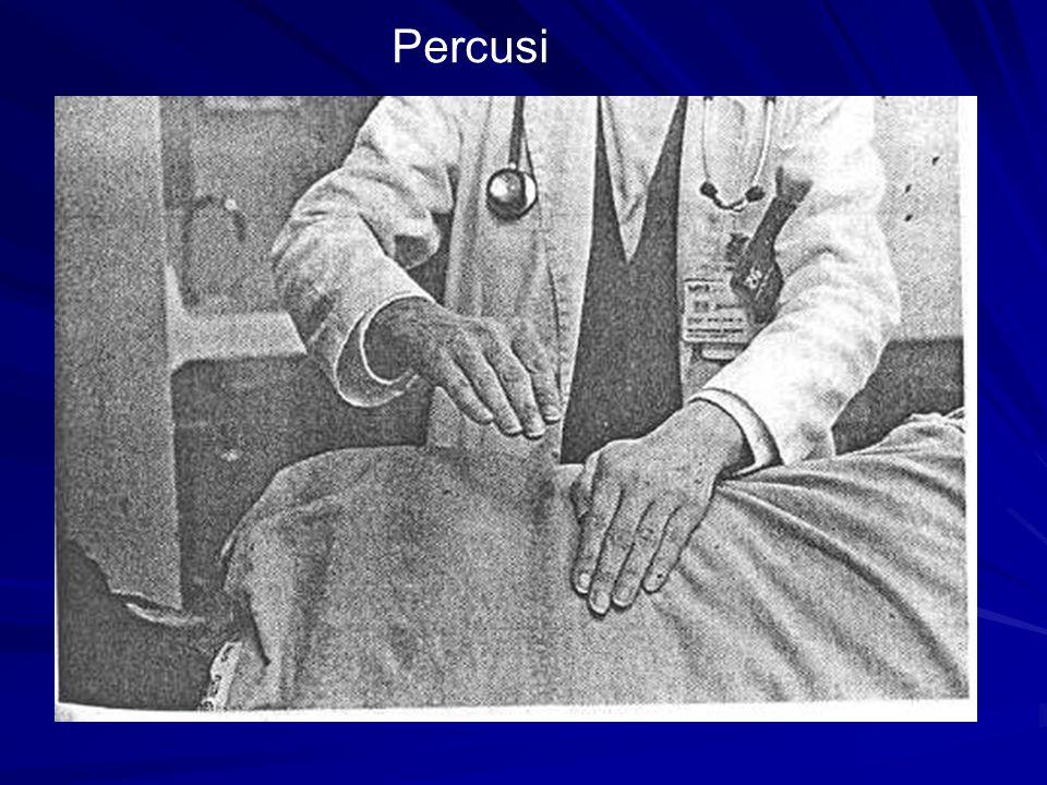 Percusi