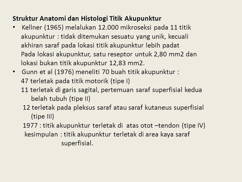 Struktur Anatomi dan Histologi Titik Akupunktur