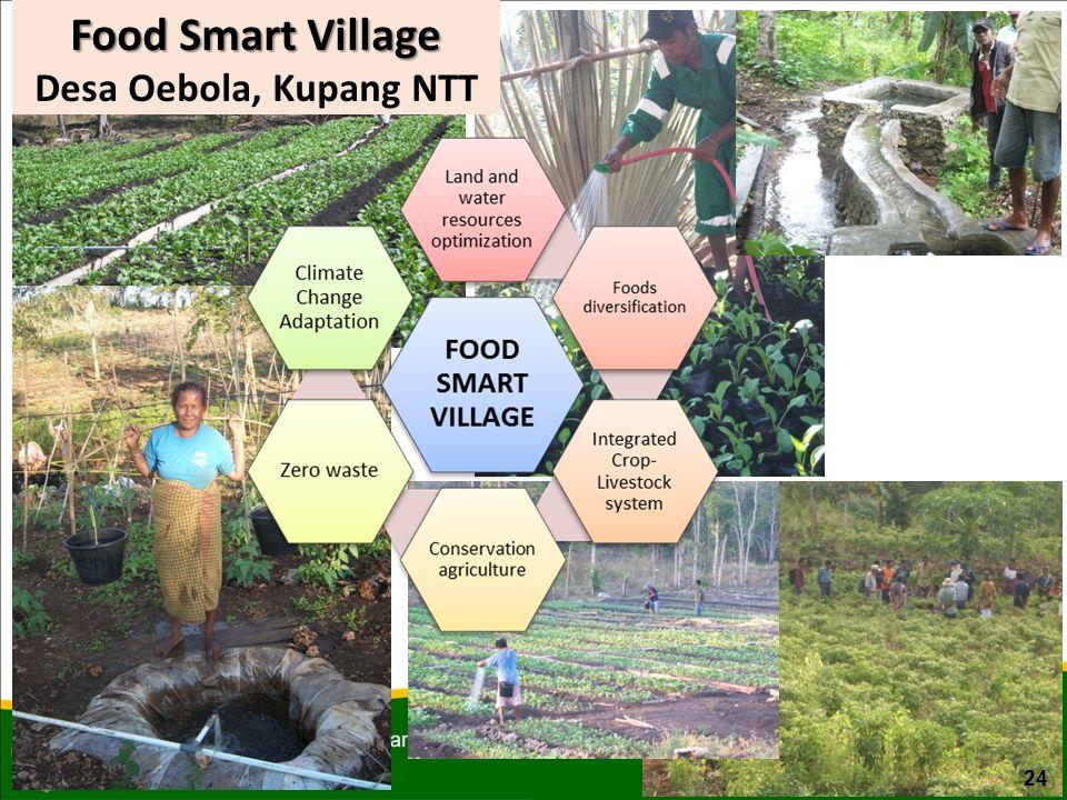 Food Smart Village Desa Oebola, Kupang NTT 24