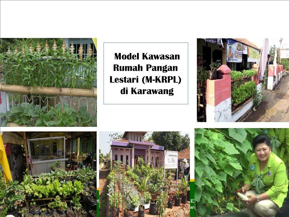Model Kawasan Rumah Pangan Lestari (M-KRPL)