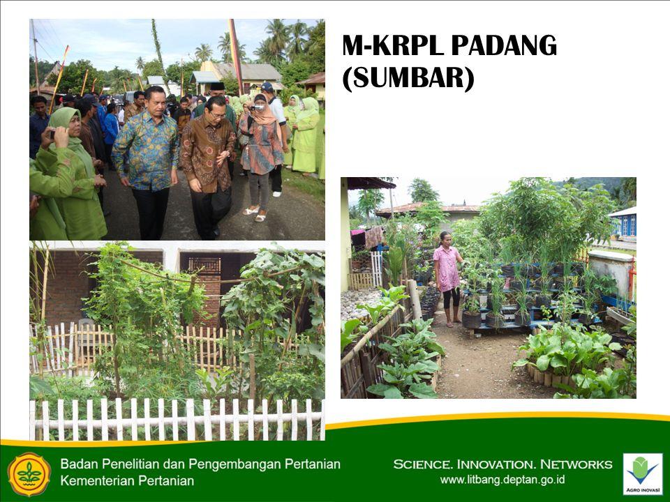 M-KRPL PADANG (SUMBAR)