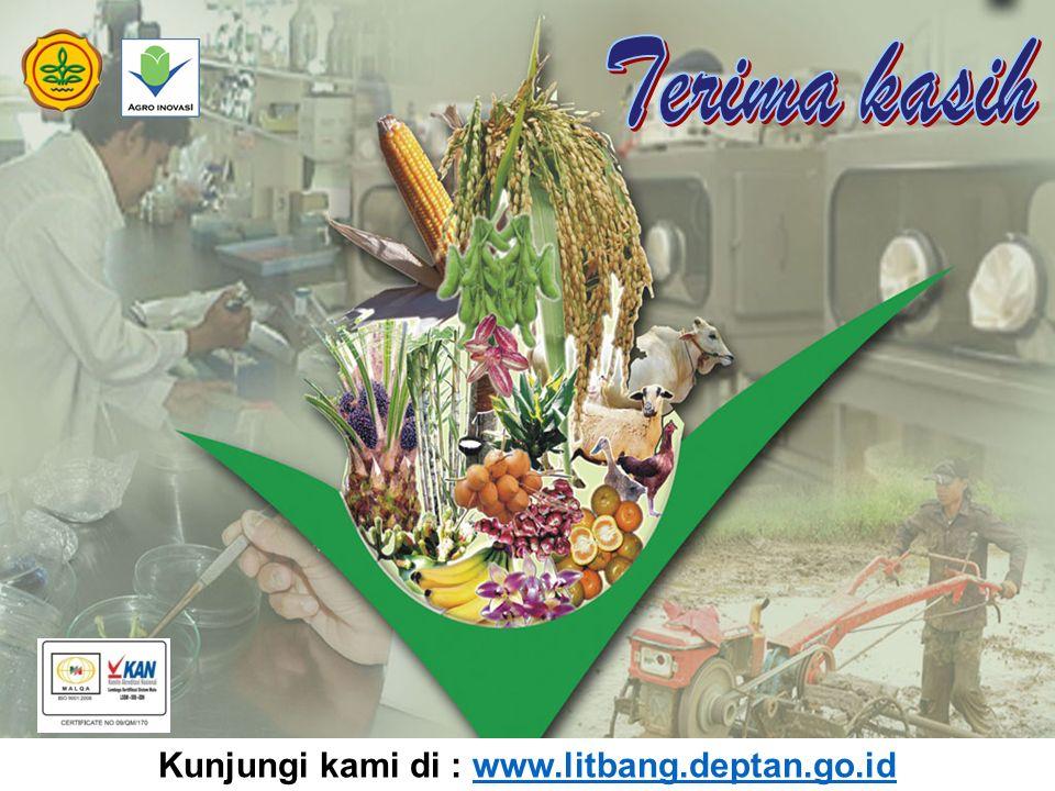 Kunjungi kami di : www.litbang.deptan.go.id