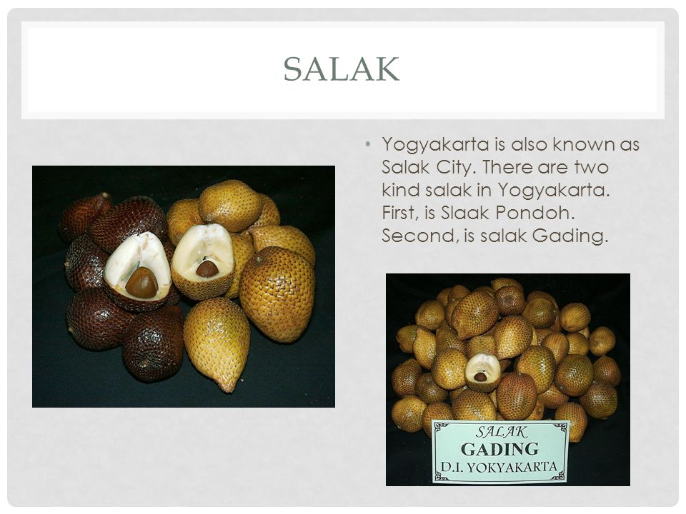 Salak Yogyakarta is also known as Salak City. There are two kind salak in Yogyakarta.