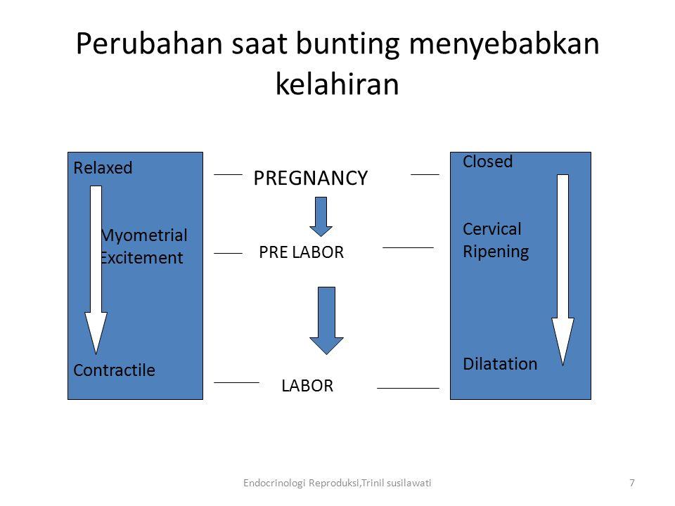 Perubahan saat bunting menyebabkan kelahiran
