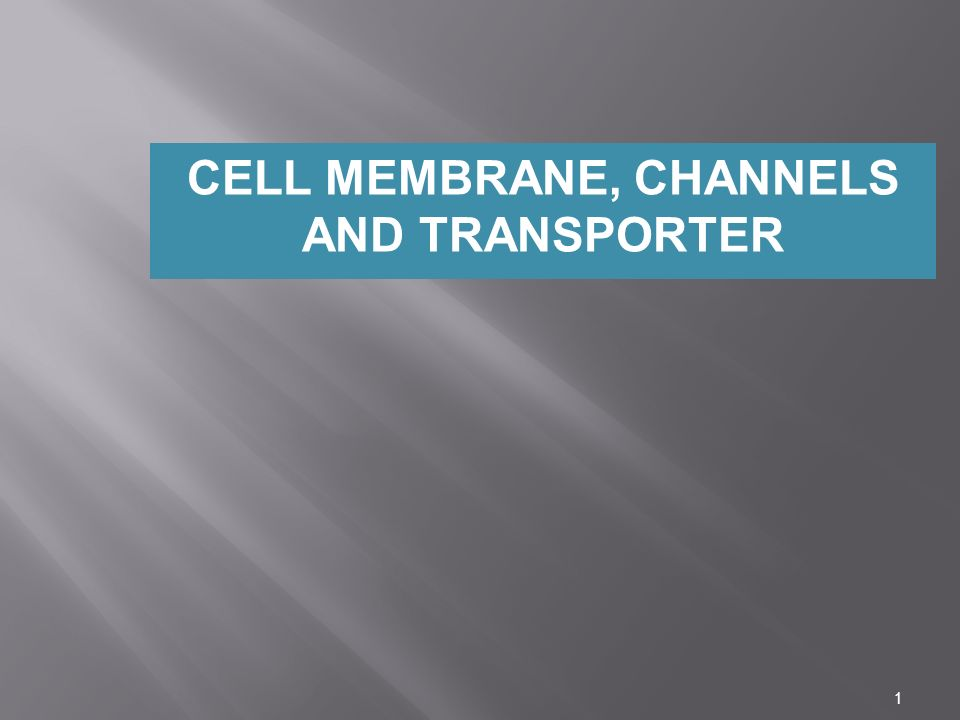 CELL MEMBRANE, CHANNELS AND TRANSPORTER