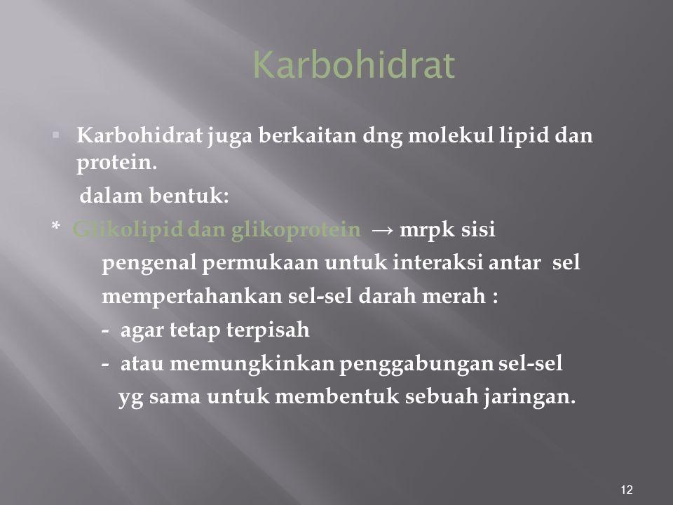 Karbohidrat Karbohidrat juga berkaitan dng molekul lipid dan protein.