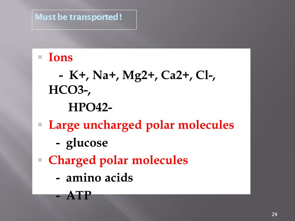 Large uncharged polar molecules - glucose Charged polar molecules