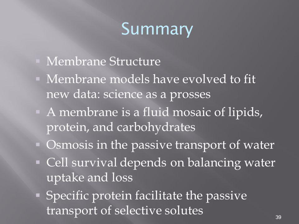 Summary Membrane Structure