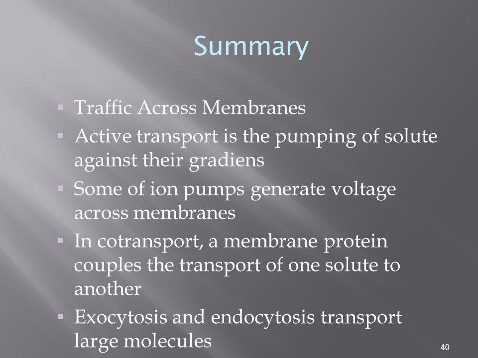 Summary Traffic Across Membranes