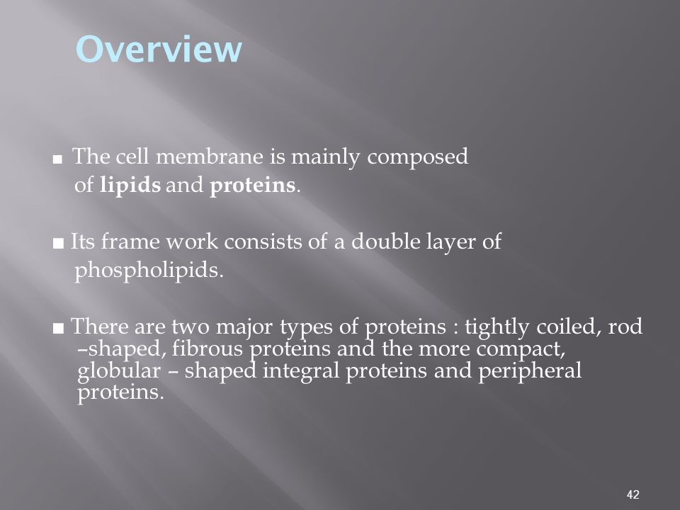 Overview of lipids and proteins.