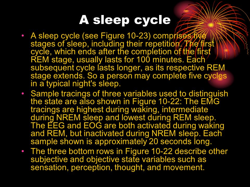 A sleep cycle