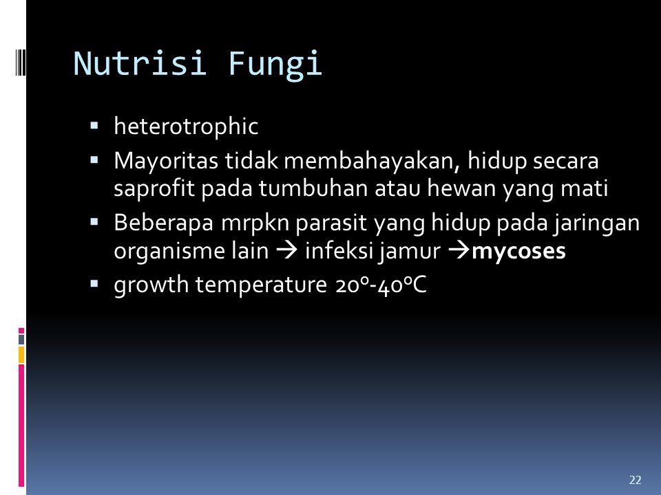 Nutrisi Fungi heterotrophic