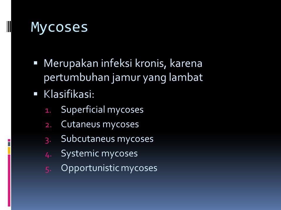 Mycoses Merupakan infeksi kronis, karena pertumbuhan jamur yang lambat