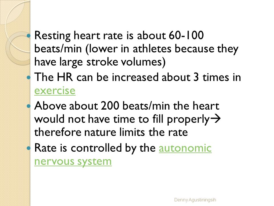 The HR can be increased about 3 times in exercise